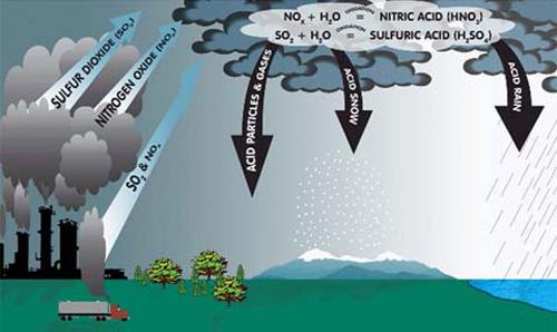 Sử dụng nước mưa có sạch và an toàn?